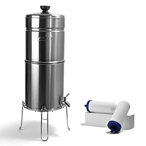 ProOne Big+ Brush Stainless-Steel Gravity Water Filter System, 3-Gallon Water Capacity, Countertop Water Dispenser for Home, Camping, and Travel Includes 2 ProOne 7-inch Filter Elements and Wire Stand