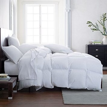 Lavish Comforts Hotel Luxury All Season Down Alternative Comforter Duvet Insert with Tabs Hypoallergenic Double Brushed for Superior Softness Washable (King)