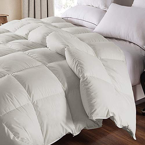 WhatsBedding 100% Cotton Down Comforter Goose Duck Down and Feather Filling Comforter. All Season Duvet Grey Insert or Stand-Alone Down Comforter (Light Gray Comforter Twin)
