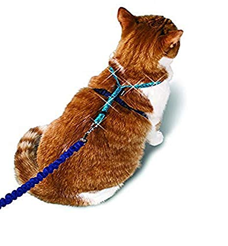 PetSafe Come With Me Kitty Glitter Harness and Bungee Cat Leash, Large