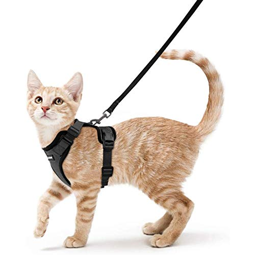 rabbitgoo Cat Harness and Leash for Walking, Escape Proof Soft Adjustable Vest Harnesses for Cats, Easy Control Breathable Jacket, Black, XS