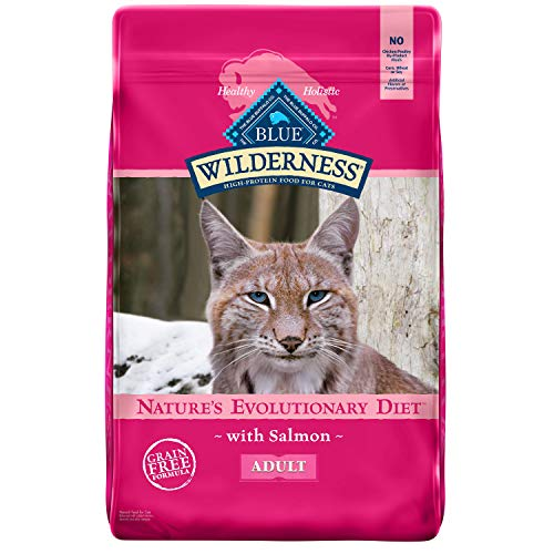 Blue Buffalo Wilderness High Protein, Natural Adult Dry Cat Food, Salmon 11-lb