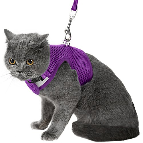 Escape Proof Cat Harness with Leash - Adjustable Soft Mesh - Best for Walking Purple Medium