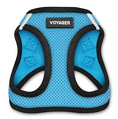 Voyager Step-in Air Dog Harness - All Weather Mesh Step in Vest Harness for Small and Medium Dogs by Best Pet Supplies - Baby Blue Base, XL (Chest: 20.5 - 23')