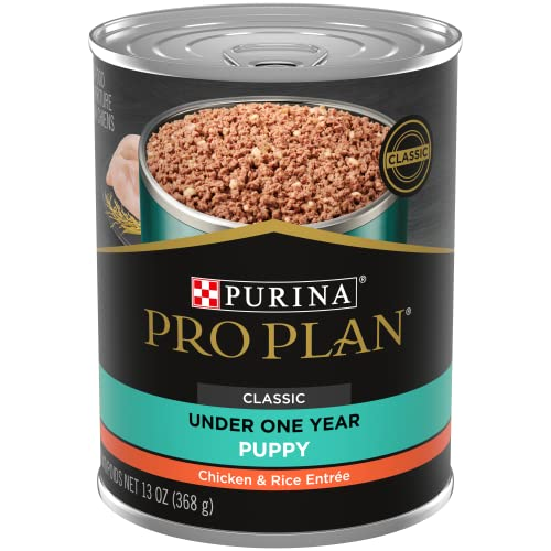 Purina Pro Plan Pate Wet Puppy Food, FOCUS Chicken & Rice Entree - 13 oz. Cans (Pack of 12)